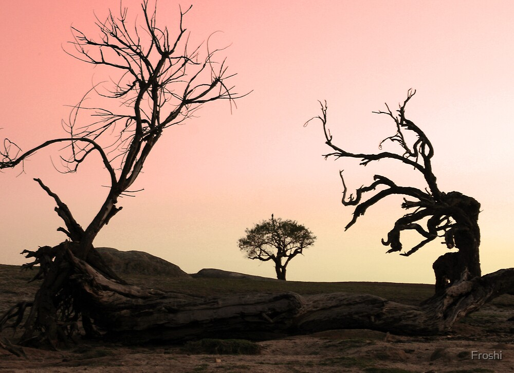 WHAT TREE'S ASPIRE TO BE.. by Froshi
