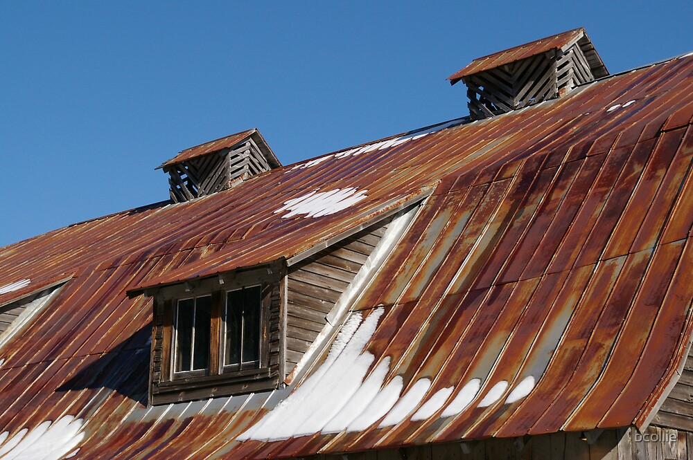 Barn Roof by bcollie
