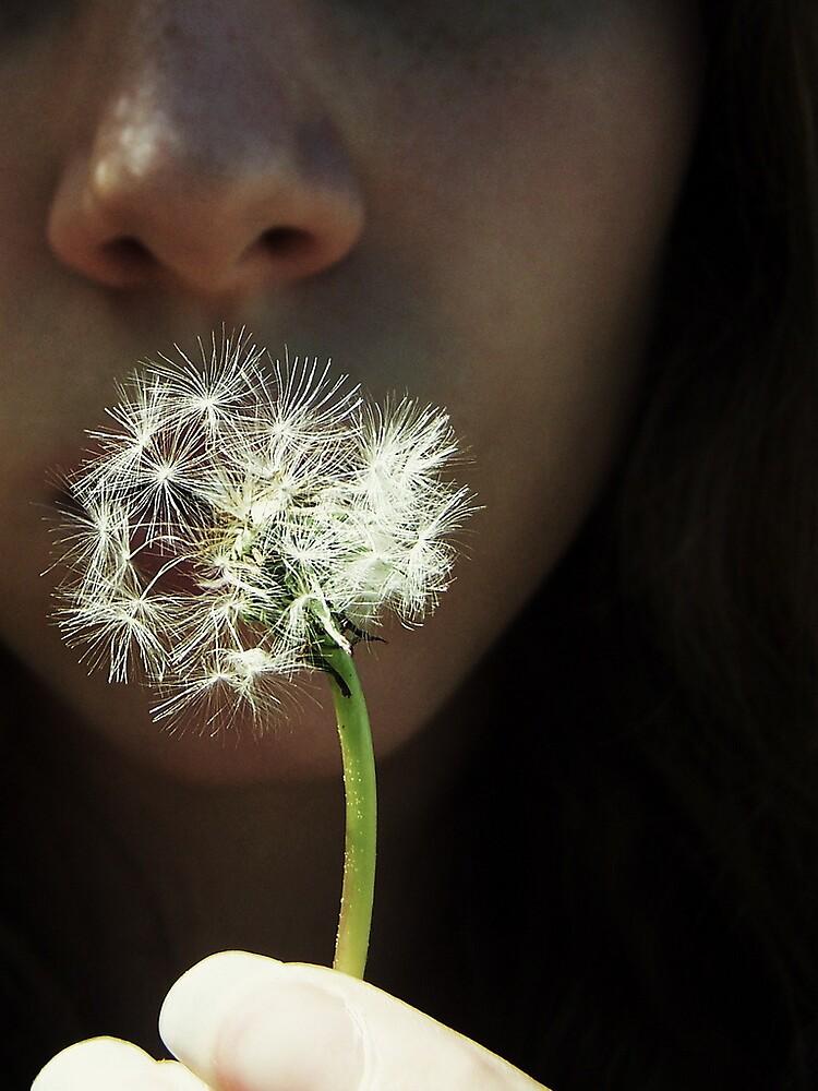 Make A Wish by Lyndsey  Kelley