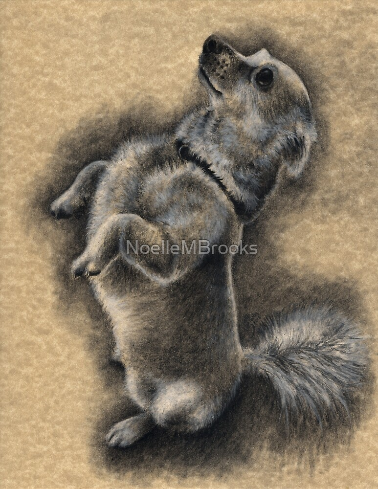 Charcoal Companions: Walter by NoelleMBrooks