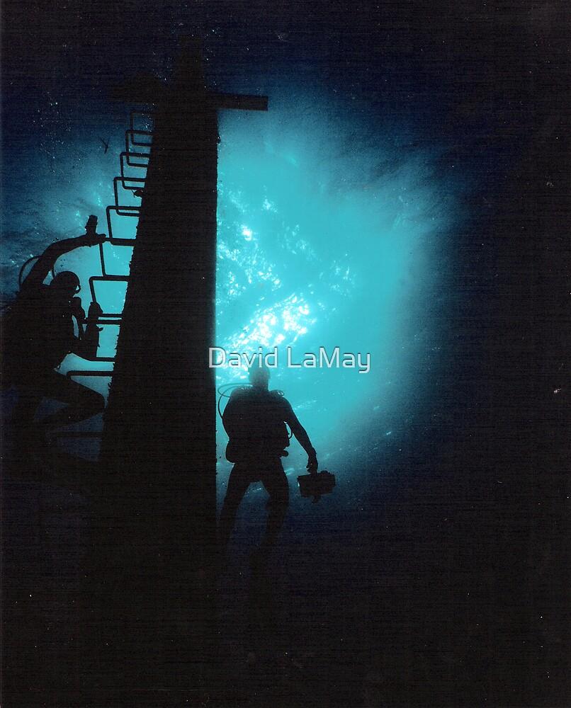 Nassau Divers by David LaMay