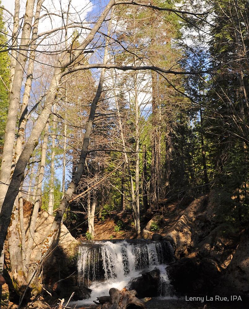 Bear River Falls in Spring 1 by Lenny La Rue, IPA