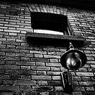 The Porchlight by TheNatureOfThings