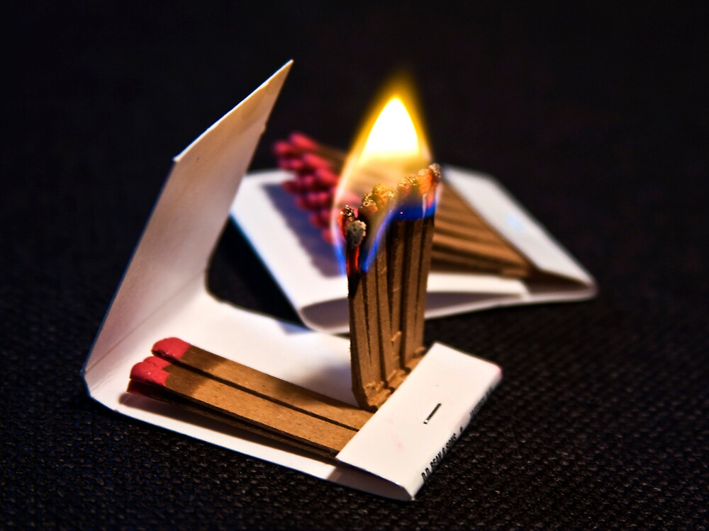Flame by Trudy Wilkerson