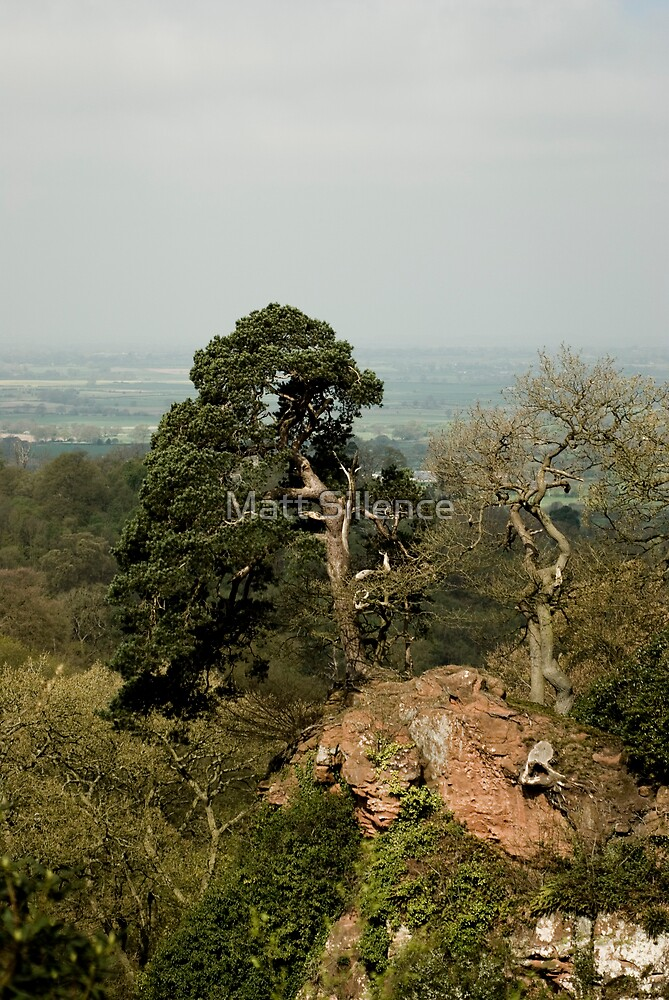 View of Shropshire by Matt Sillence