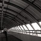 The Terminal by Dan Algina