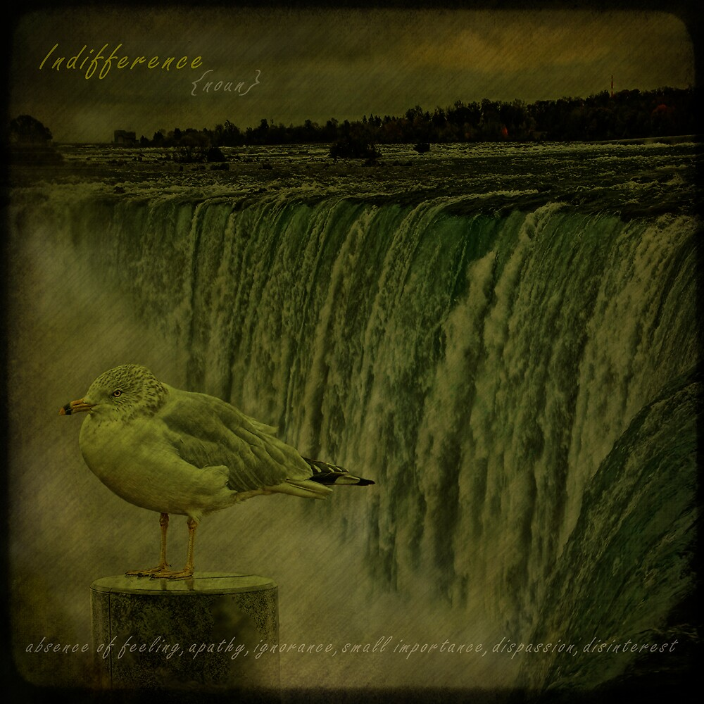 Indifference by egold