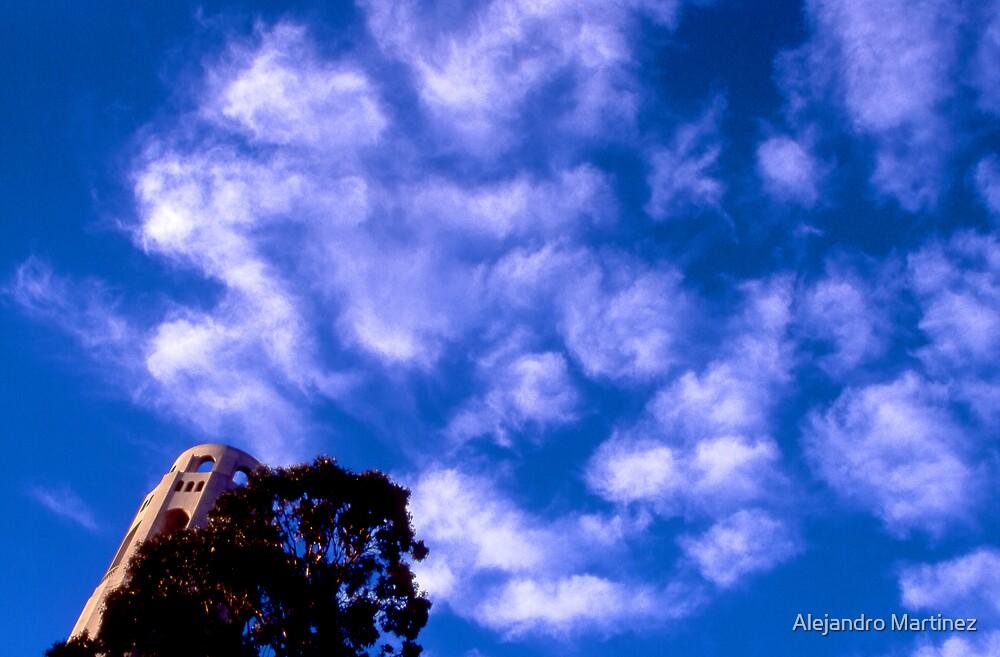 Coit Tower San Francisco by Alejandro Martinez