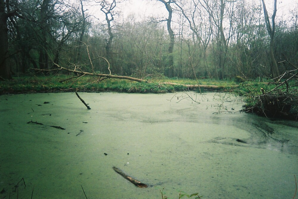 More Swampage by KarmaSparks