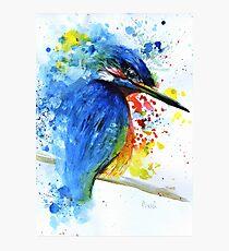 Watercolour Kingfisher Photographic Print