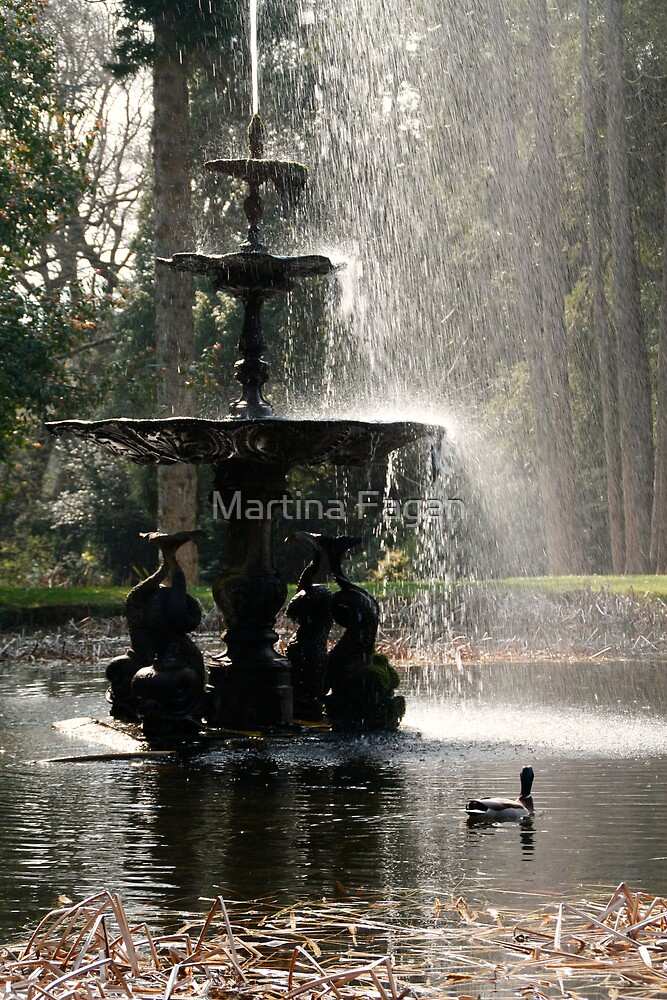 Duck & Fountain by Martina Fagan