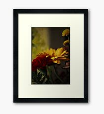 Aged Beauties Framed Print