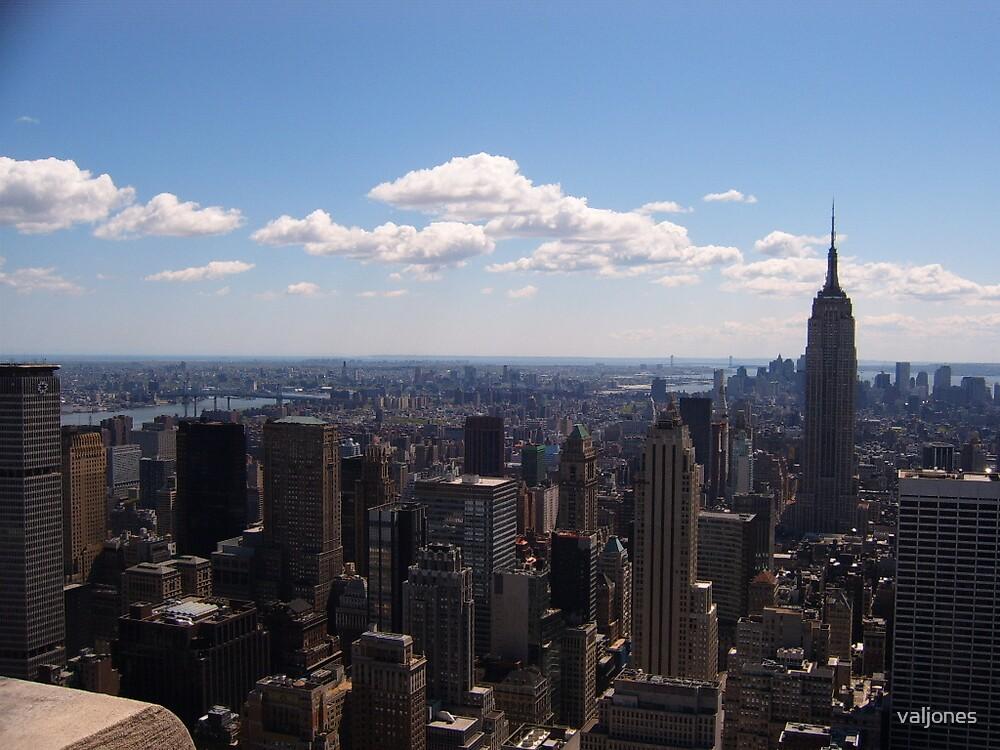 view from Rockefeller Centre New York by valjones