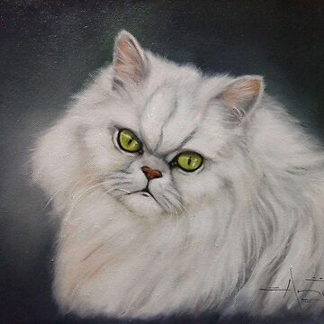 Persian cat by AnetDuToit