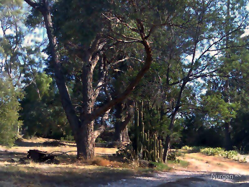 bush gateway by Nurgen ~~