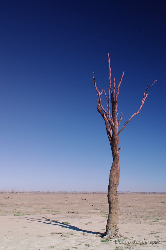 dry times by Donna Vanderspek