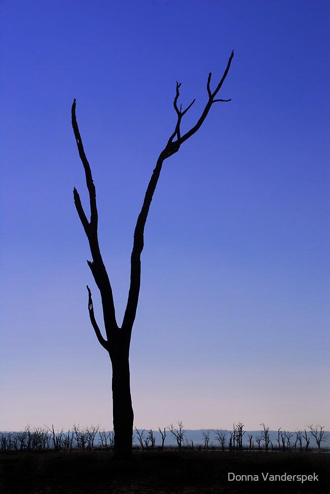 Silhouette by Donna Vanderspek