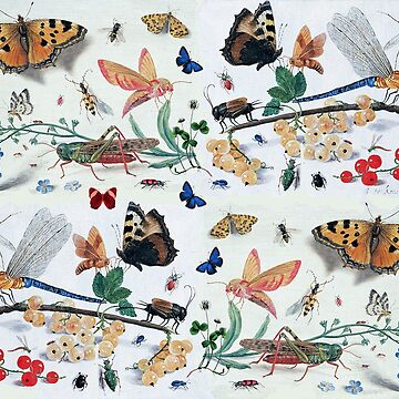 BUTTERFLIES ,INSECTS ,FLOWERS AND PLANTS Antique Drawings Collectıon by BulganLumini