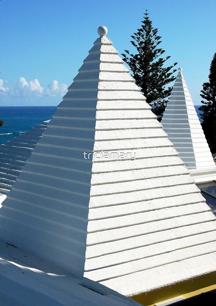 Bermuda triangle by triciamary
