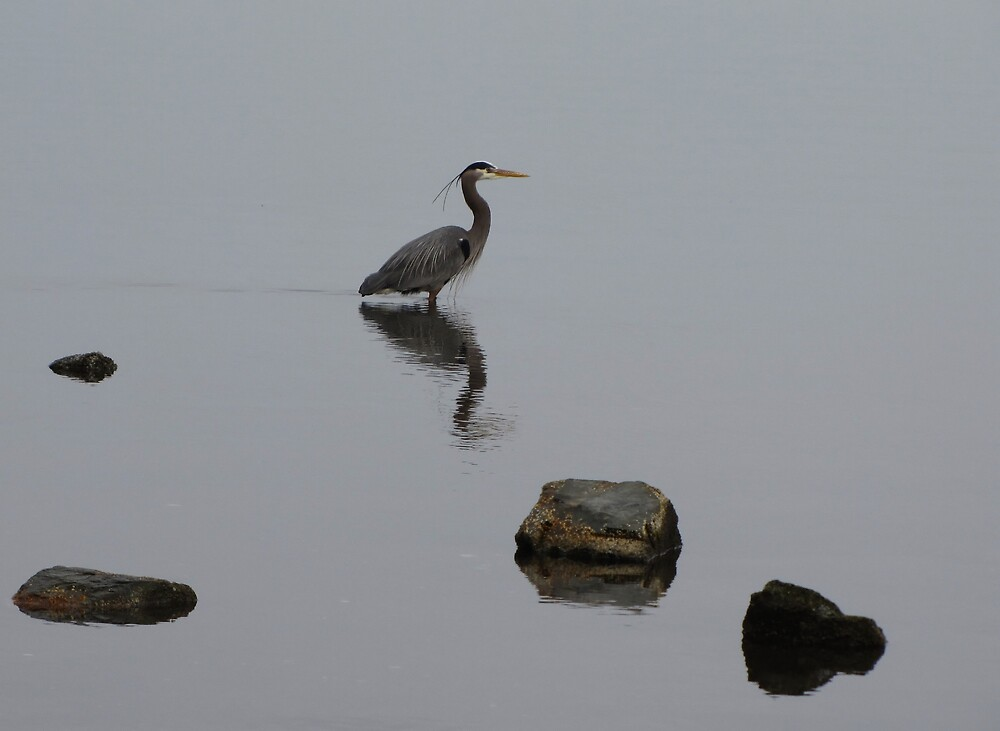 Fishing by Corey Bigler