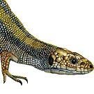 Lizard Reptile Watercolor Painting Wildlife Artwork by Alison Langridge