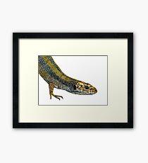 Lizard Reptile Watercolor Painting Wildlife Artwork Framed Print