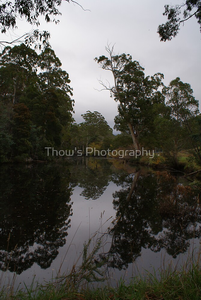 Lobster Creek Ulverstone by Thow's Photography .
