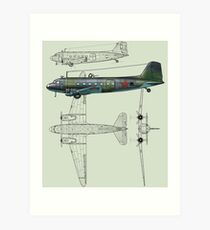 Li-2 Art Print