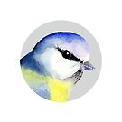 Blue Tit Bird Watercolor Painting Wildlife Artwork by Alison Langridge