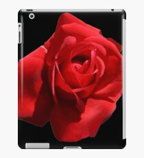 Red Rose Isolated iPad Case/Skin