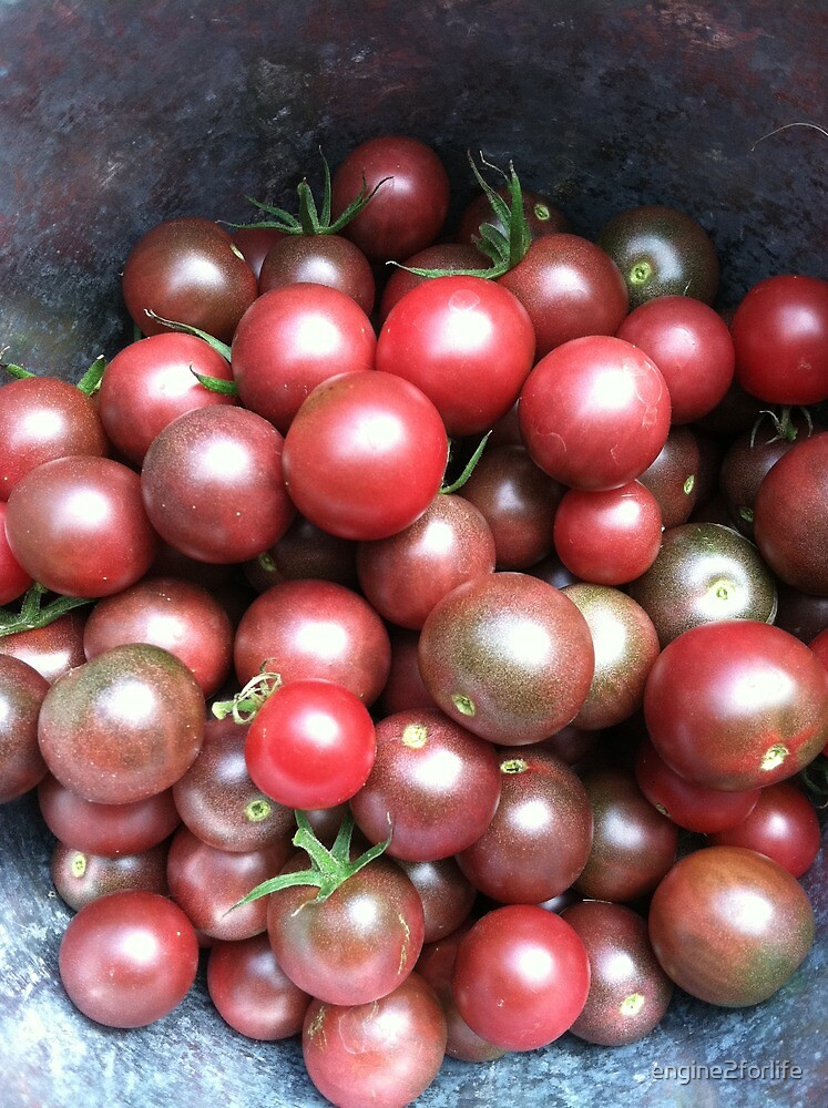 Black Cherry Tomatoes by engine2forlife
