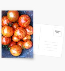 Heirloom Tomatoes Postcards