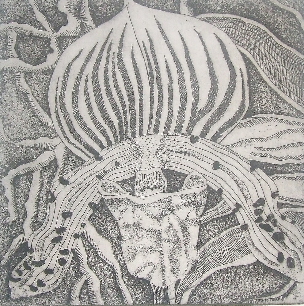 Orchid Etching by Megan Lane