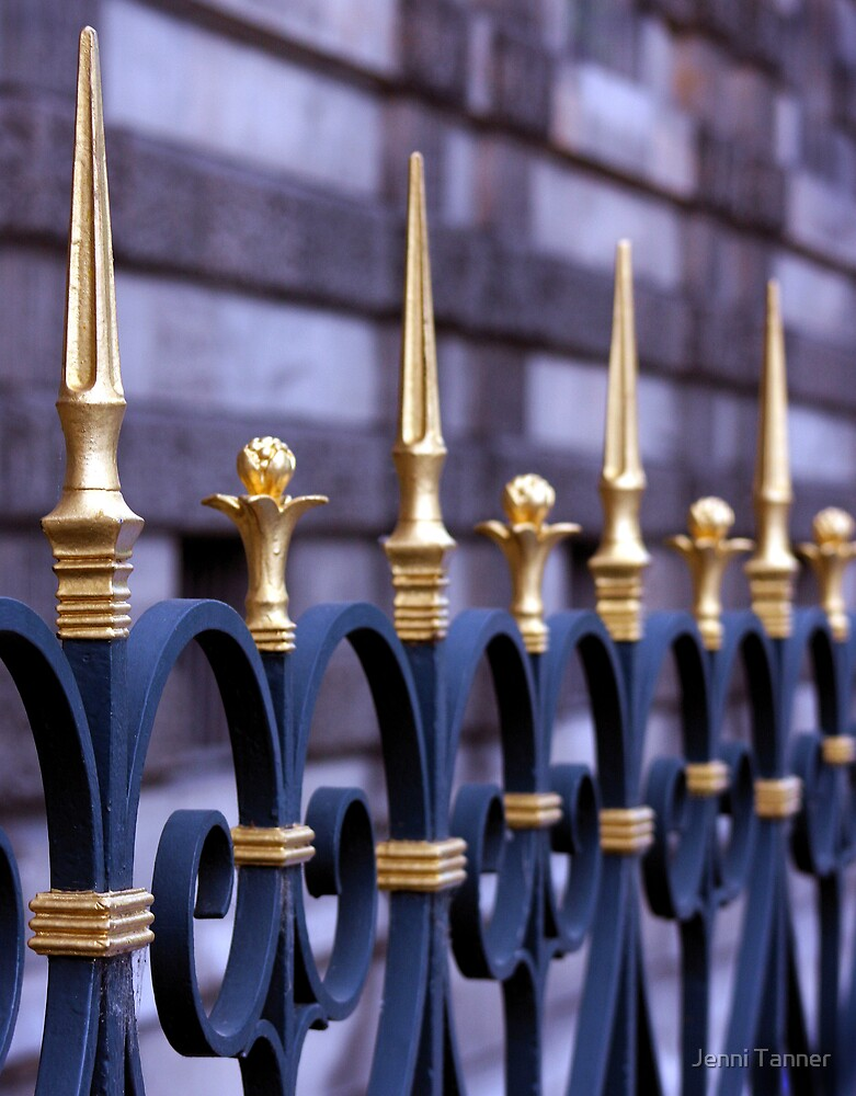 Fancy fence by Jenni Tanner