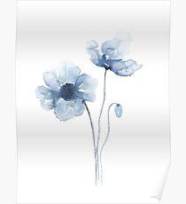 Póster Amapolas de acuarela azul