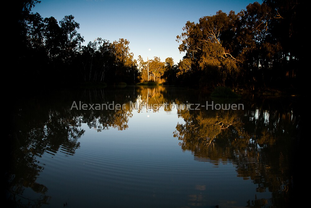 Dark reflection by Alexander Meysztowicz-Howen