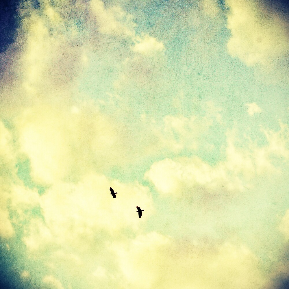 Two Birds in the sky by Marc Loret