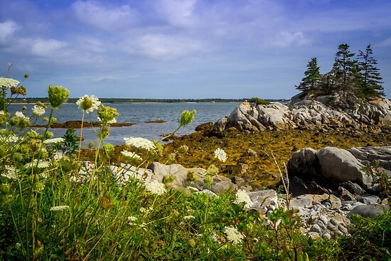 Pleasant Point Beach by mlphoto