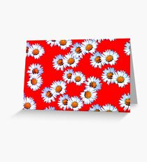 Red and White Daisy Greeting Card