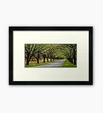 Dunrossil Drive Framed Print
