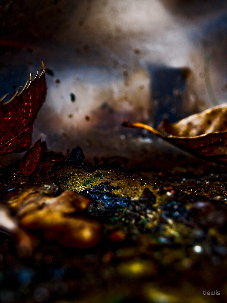 decay by tlewis