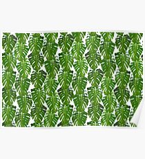 Monstera leaf pattern - palm tree design - Monstera leaves Poster