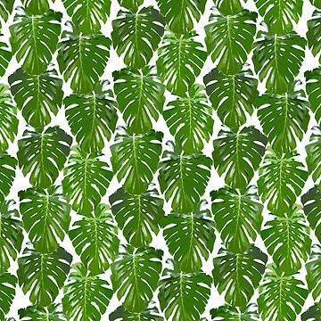 Monstera leaf pattern - palm tree design - Monstera leaves by ohaniki