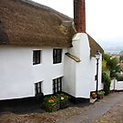 Minehead Cottages III by Dave Law