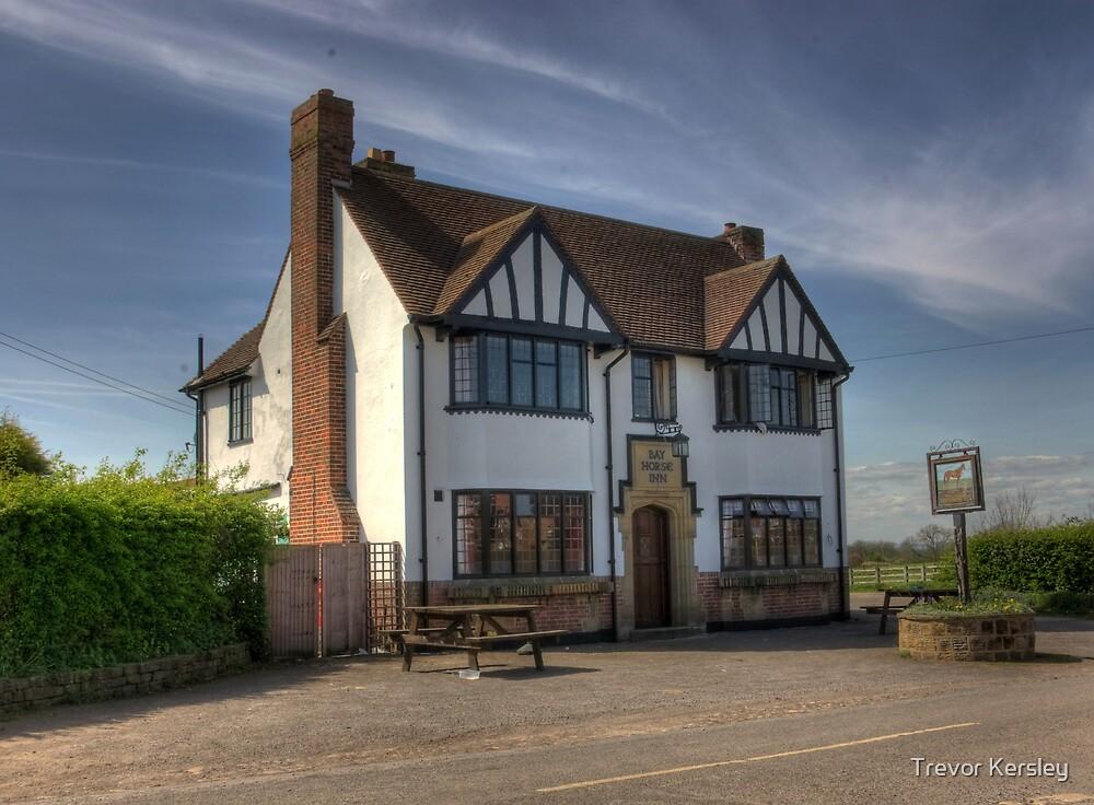 Bay Horse Inn - Aldwark near York by Trevor Kersley