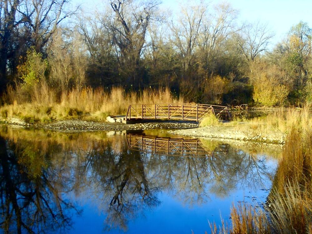 Peaceful Waters by BellaStarr
