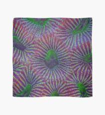Favites coral pattern Scarf