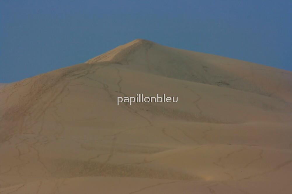 Dunes de Pyla by Pamela Jayne Smith