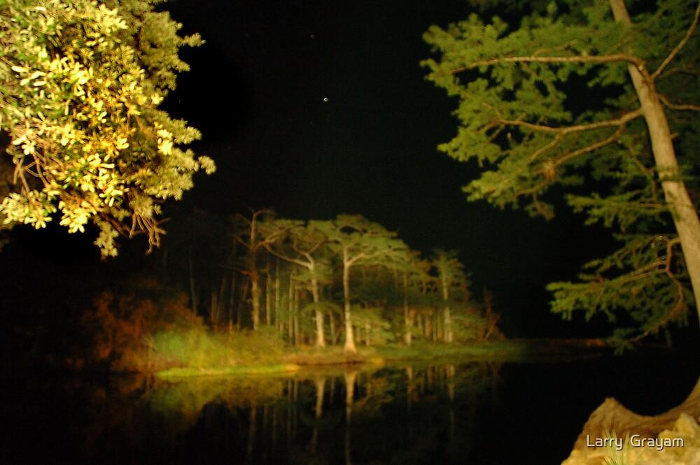 Fisheating Creek at night by Larry  Grayam