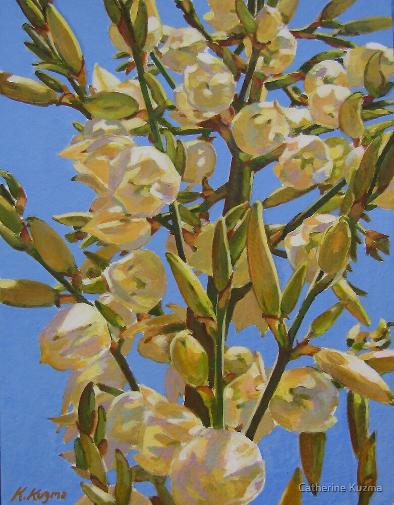 Yucca In Full Bloom II by Catherine Kuzma